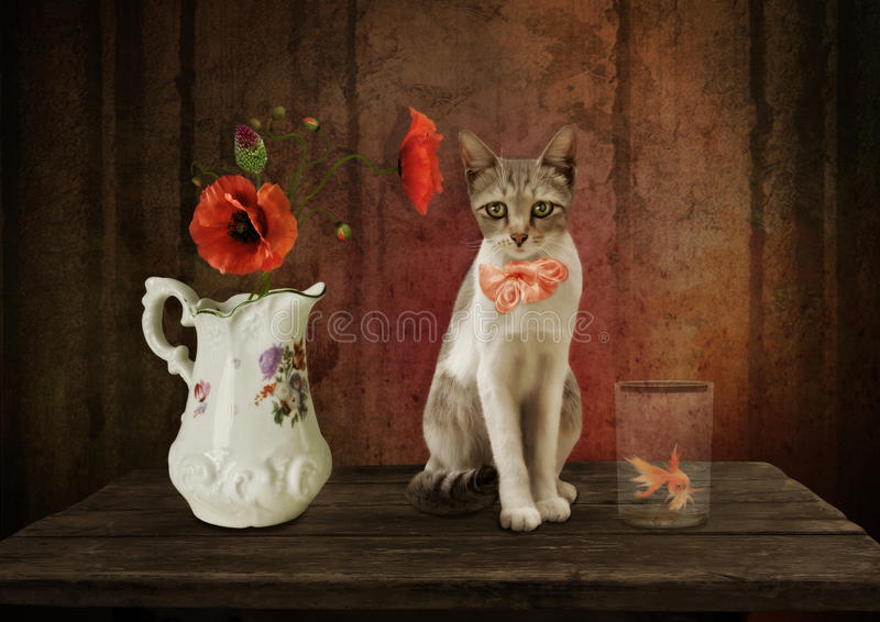 Birthday. Cat with pink bow on her neck sitting on the wooden table, surrounded by red poppies in a jug and goldfish in a glass.Birthday