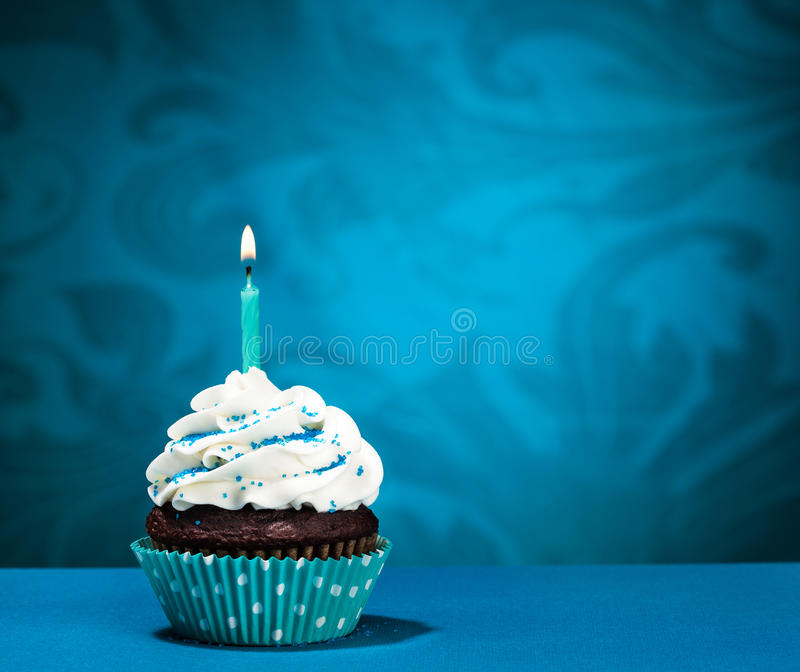 Birthday Cupcake royalty free stock photos