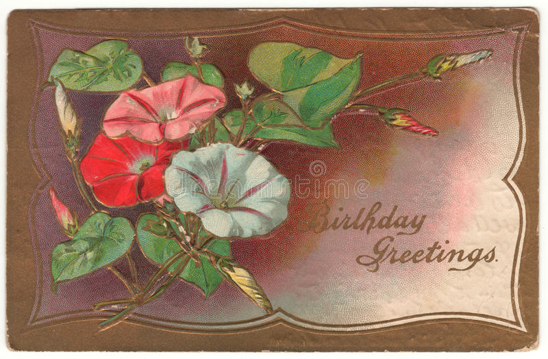 Birthday Greetings Morning Glory Vintage Postcard stock photography