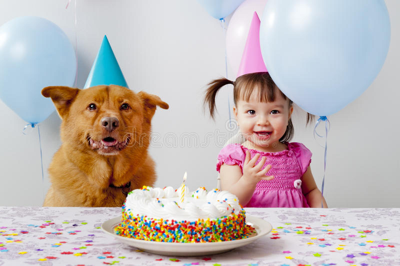 Birthday party. Girl and dog celebrating birthday royalty free stock photos