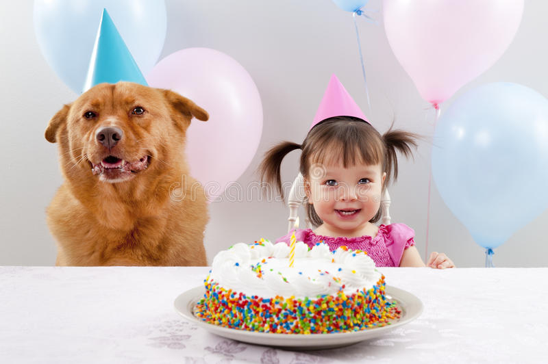 Birthday party. Girl and dog celebrating birthday stock photography