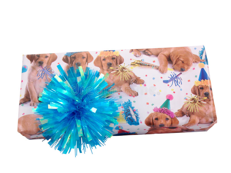 Birthday present - puppy wrap royalty free stock photography