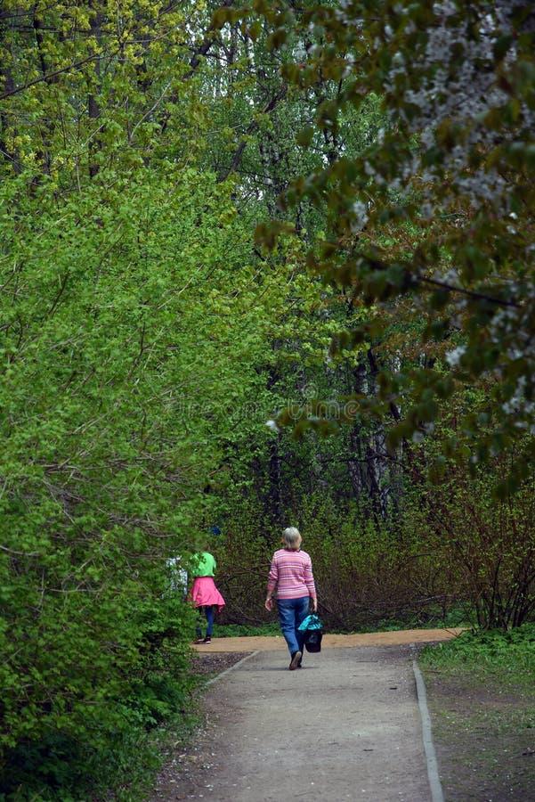 Birulevsky arboretum w Moskwa, popularny punkt zwrotny Kolor wiosny fotografia obrazy stock
