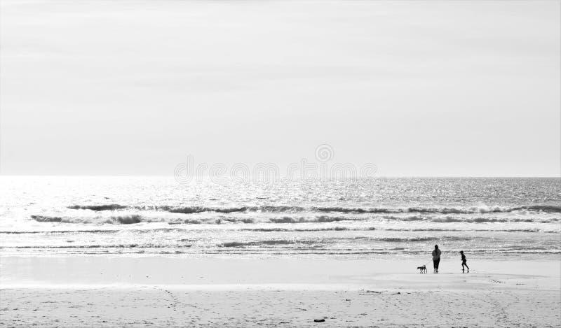 Biscarosse strand, Frankrike arkivfoton