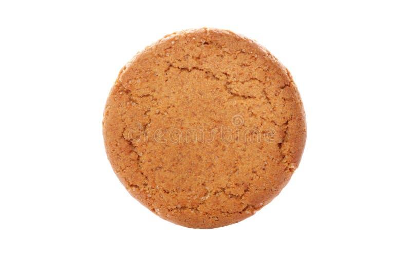 Biscoito da porca do gengibre foto de stock royalty free