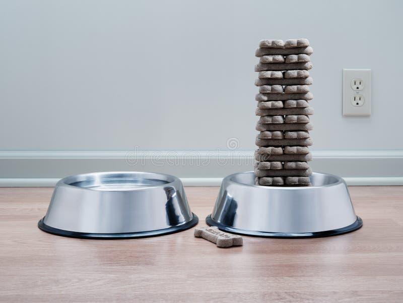 Biscoitos de cão obrigatoriamente empilhados na bacia dos alimentos para animais de estimação do metal com bacia da água foto de stock