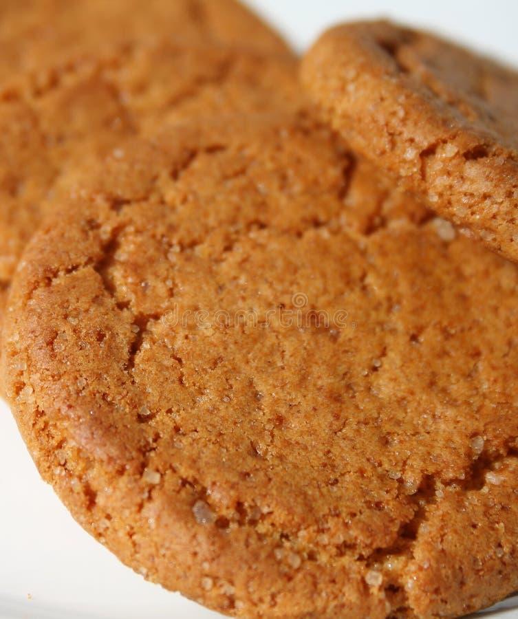 Biscoitos do gengibre imagens de stock royalty free