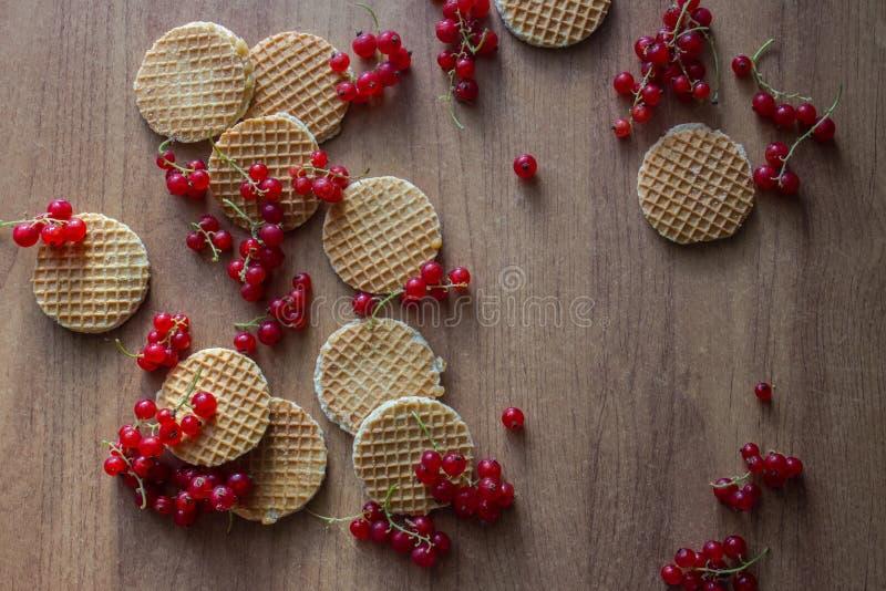Biscoitos e corintos vermelhos fotografia de stock