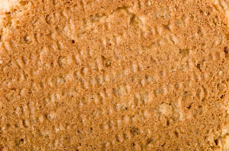 Biscoitos fundo da porca do gengibre, close-up no verso imagens de stock