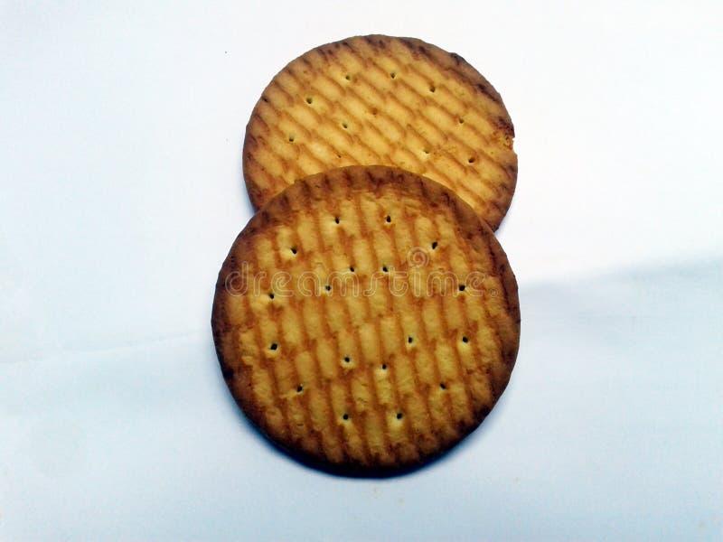 Biscoitos inteiros digestivos do círculo do trigo isolados na terra traseira branca foto de stock