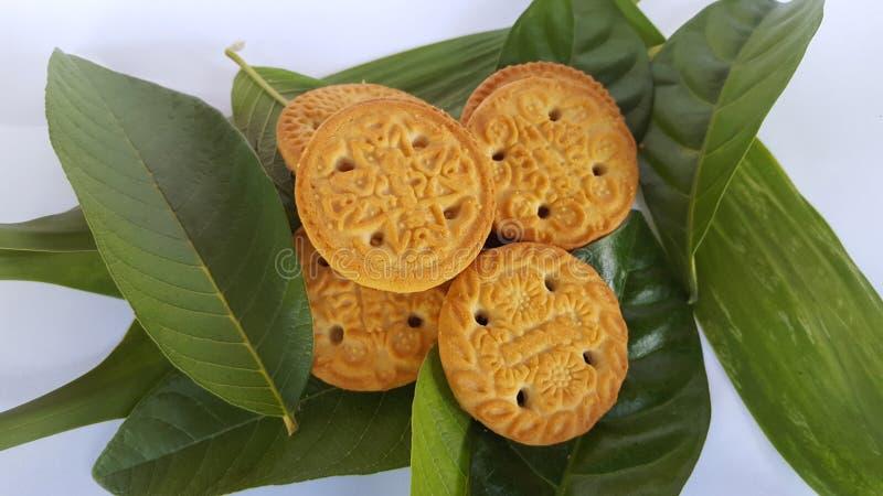 Biscotti croccanti, l'alimento complementare del bambino fotografia stock libera da diritti