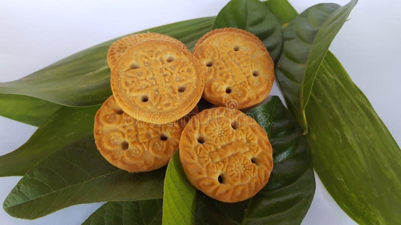 Biscotti croccanti, l'alimento complementare del bambino fotografia stock