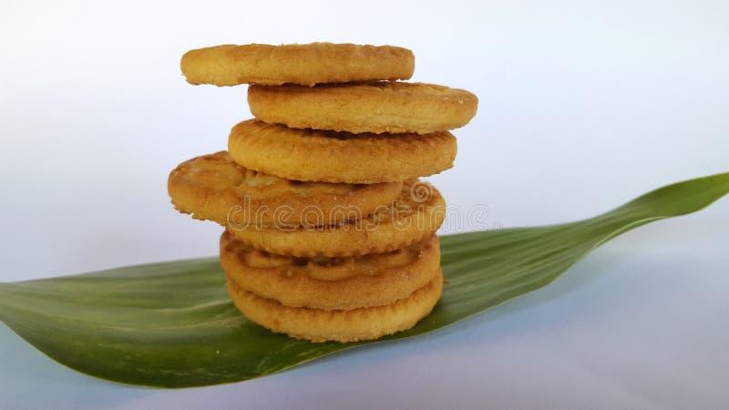 Biscotti croccanti, l'alimento complementare del bambino immagini stock