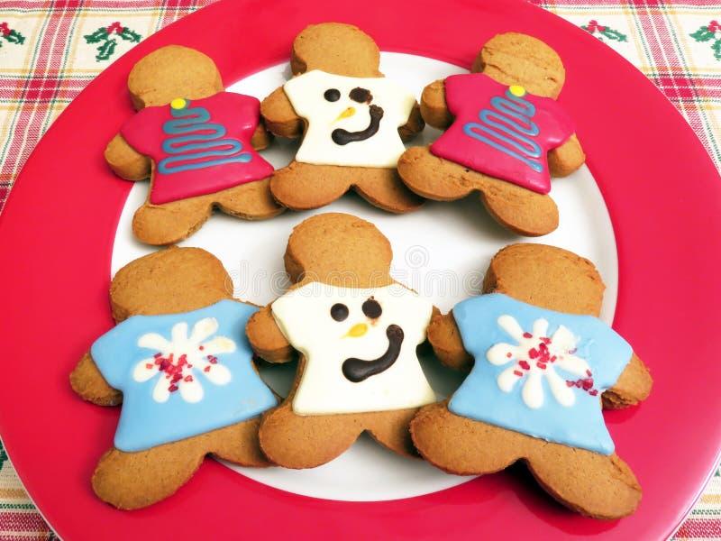Biscotti del pan di zenzero di festa di Natale immagine stock libera da diritti