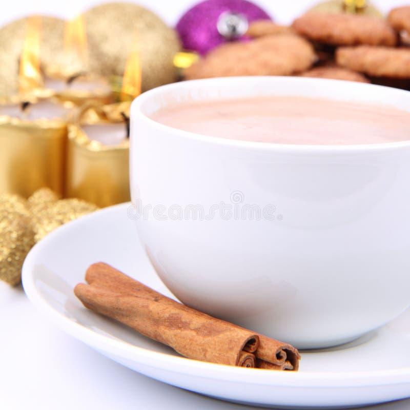 Biscotti della cannella e del cioccolato caldo fotografie stock libere da diritti