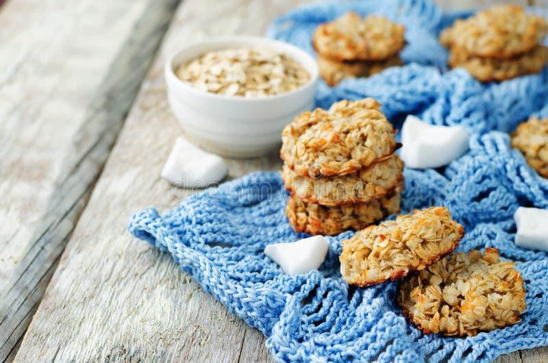 Biscotti della noce di cocco della farina d'avena fotografia stock