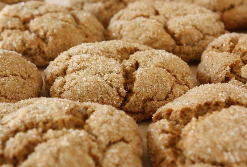 Biscotti dello zenzero immagini stock