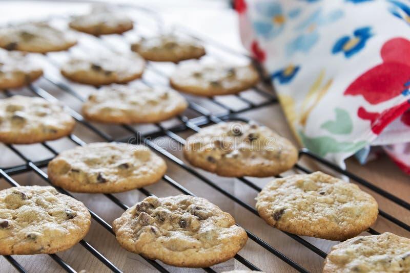 Biscotti di pepita di cioccolato caldi al forno freschi che si raffreddano sulle rastrelliere fotografia stock libera da diritti