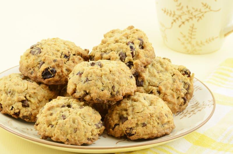 Biscotti di pepita di cioccolato dell'uva passa della farina d'avena fotografie stock