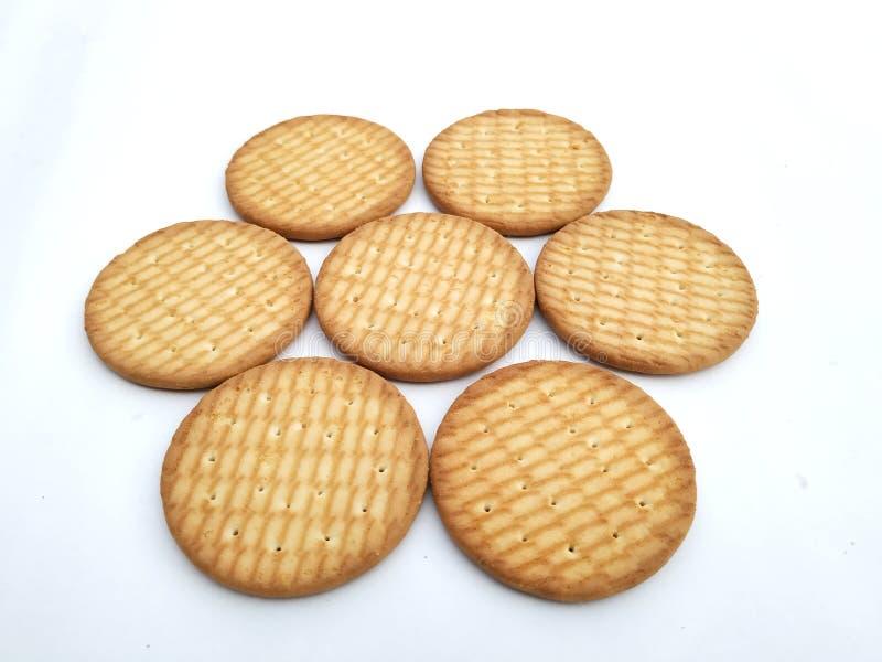 Biscotti digestivi del giro del grano intero isolati su terra posteriore bianca immagine stock