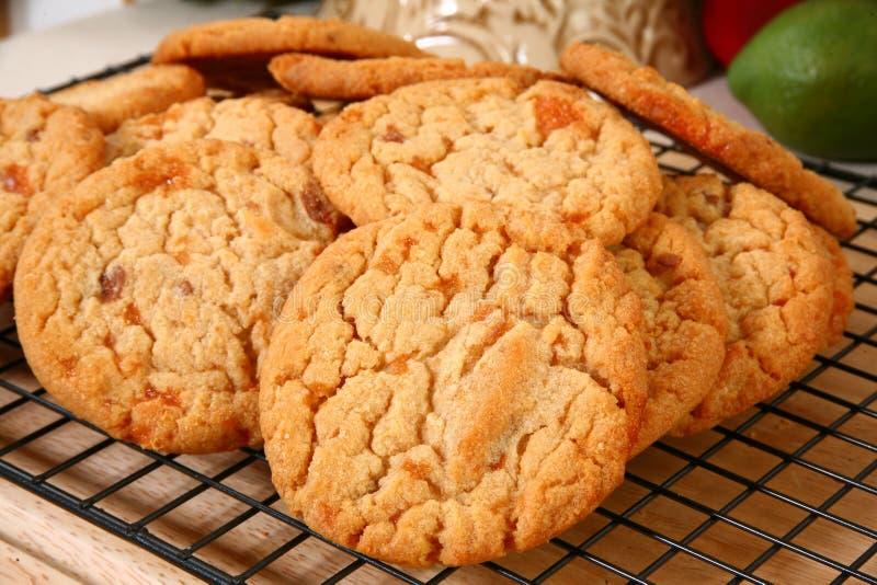 Biscotti fragili del chip dell'arachide immagine stock