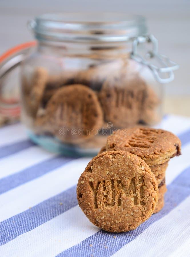 Biscotti freschi - biscotti dell'avena fotografia stock libera da diritti