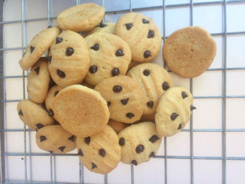 Biscotti freschi dal forno fotografia stock libera da diritti