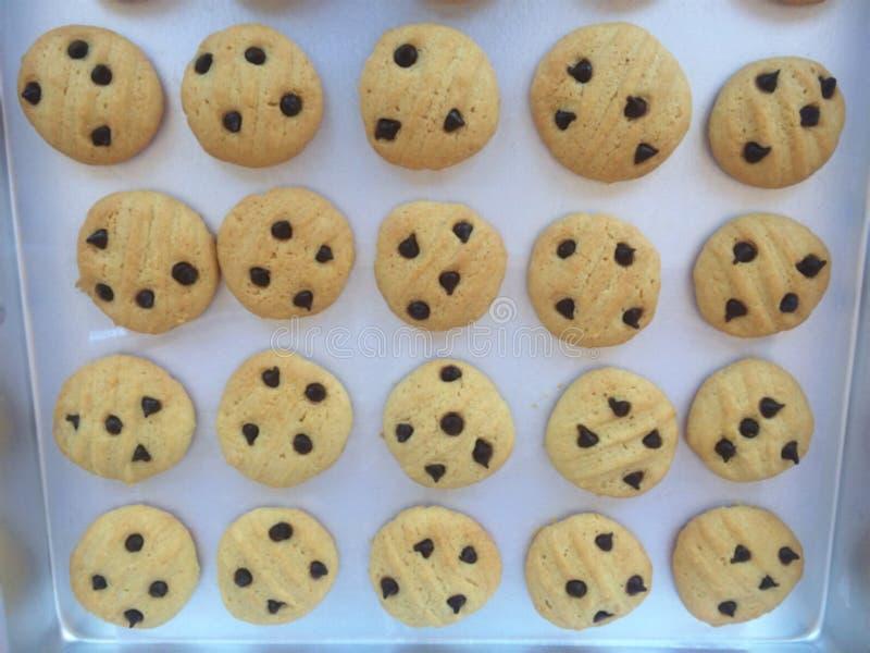 Biscotti freschi dal forno immagini stock