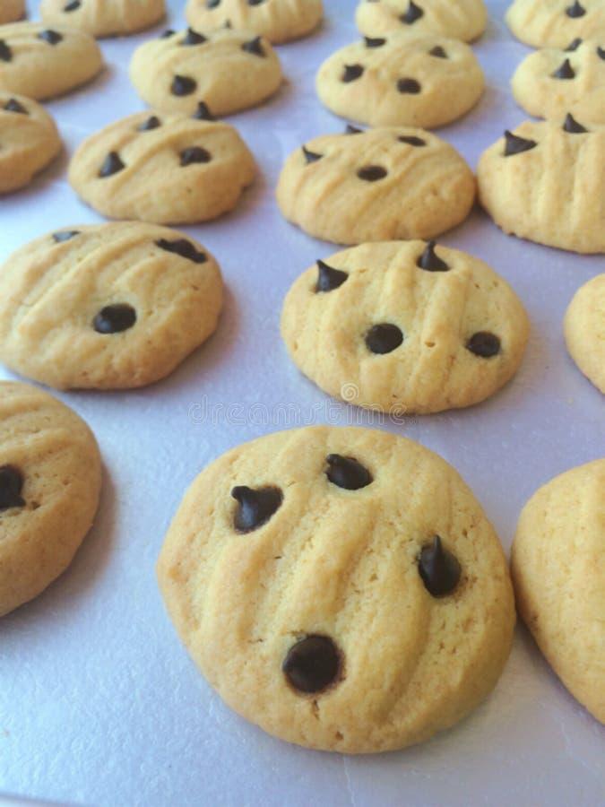 Biscotti freschi dal forno immagine stock