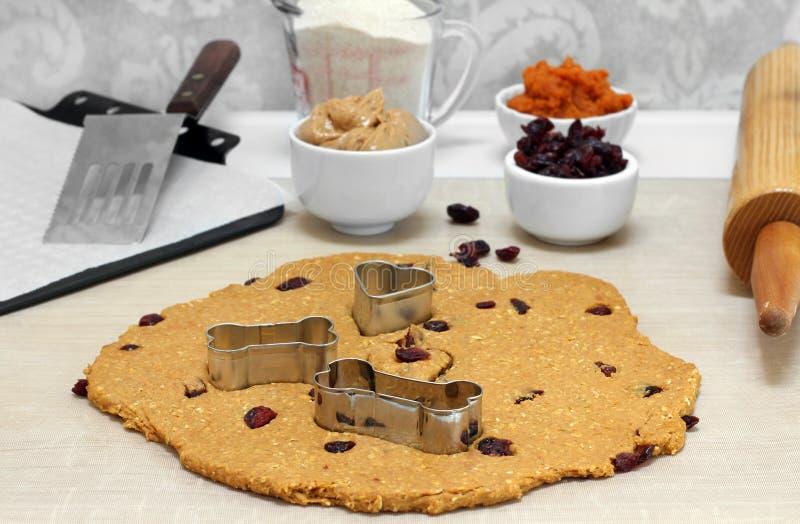 Biscotti per cani bollenti del burro di arachidi, della zucca, dell'avena e del mirtillo rosso fotografia stock libera da diritti