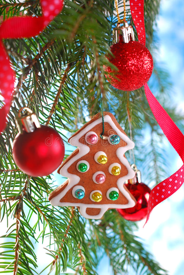 Biscotto casalingo del pan di zenzero che appende sull'albero di Natale immagine stock