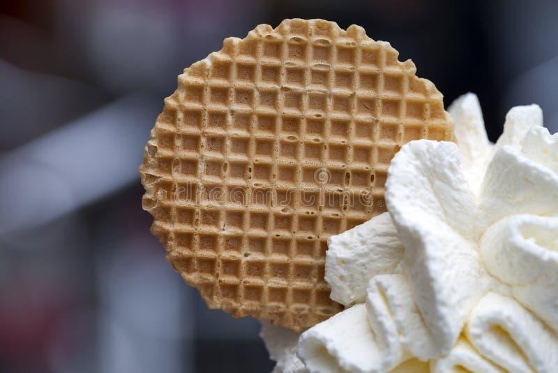 Biscotto sul gelato fotografia stock