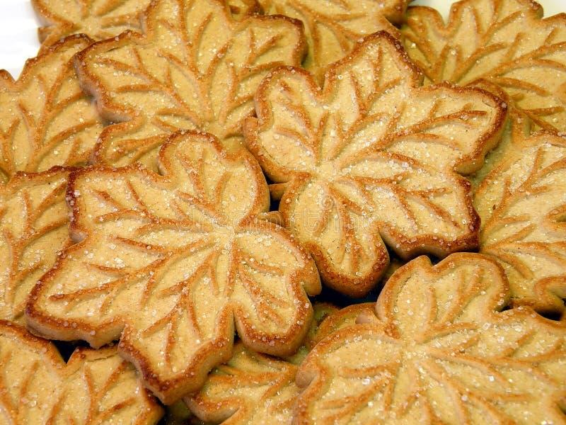 Biscuit photographie stock libre de droits
