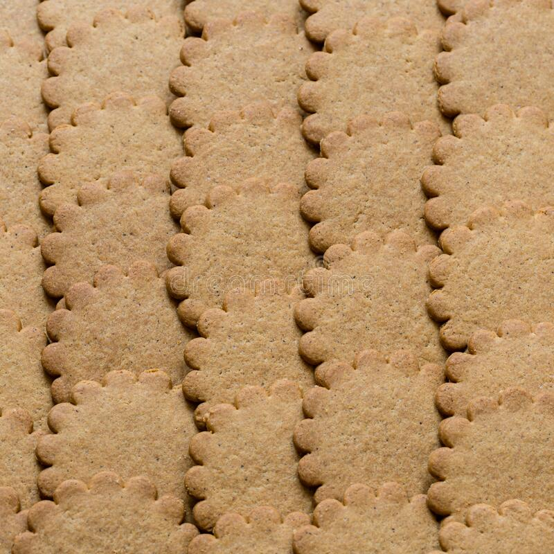 Biscuit background. Brown round cookies texture. Fattening unhealthy concept.  royalty free stock images