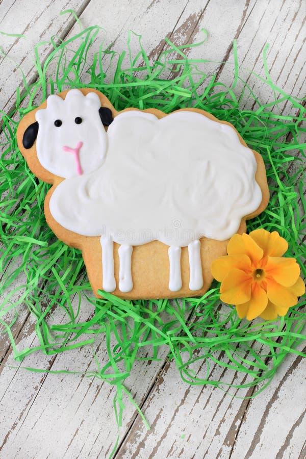 Biscuit d'agneau de Pâques photographie stock libre de droits