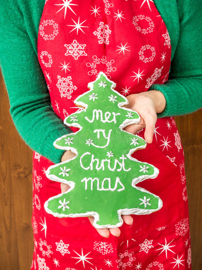 Biscuit de pain d'épice d'arbre de Noël photos libres de droits