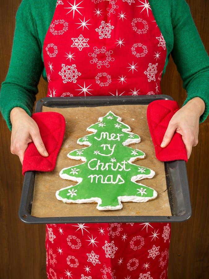 Biscuit de pain d'épice d'arbre de Noël photographie stock libre de droits