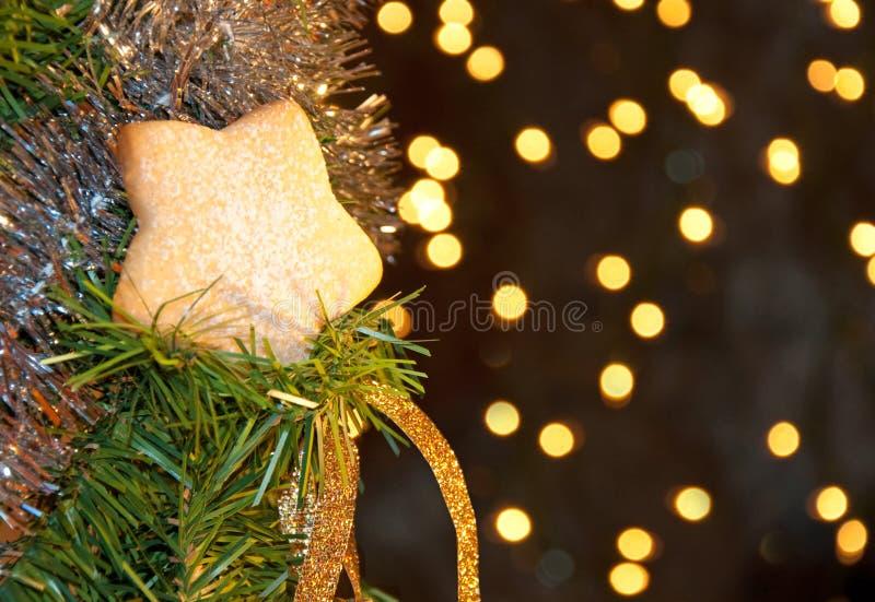 Biscuit en forme d'étoile avec du sucre en poudre photographie stock
