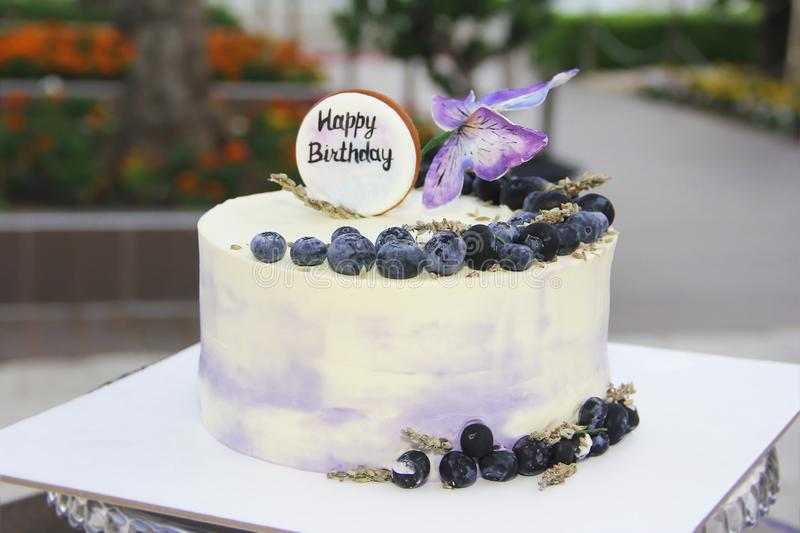 Biscuit festive cake cheesecake with blueberries and butterflies for birthday royalty free stock photo