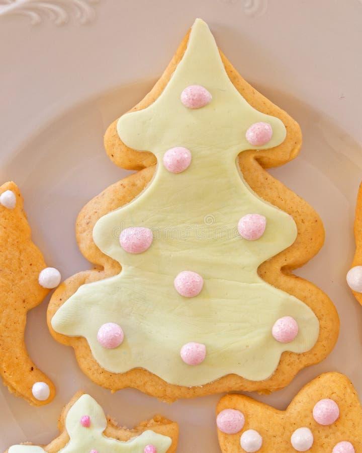 Biscuit formé fait maison d'arbre de Noël du plat blanc images stock