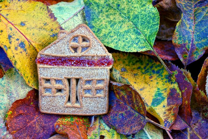 Biscuit house on dry fallen colored leaves. Dry sweet biscuits in the form of a house on fallen leaves royalty free stock photos