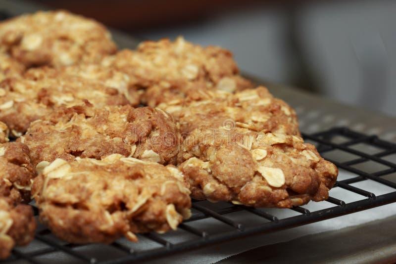 Biscuits d'Anzac d'Australien photos libres de droits