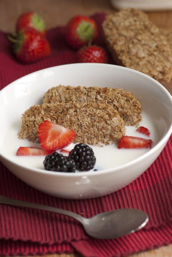Biscuits de blé photo libre de droits