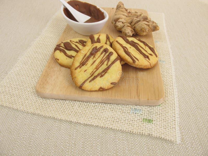 Biscuits de gingembre avec du chocolat image libre de droits