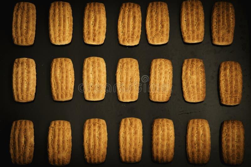 Biscuits faits maison dans le plateau de cuisson photographie stock