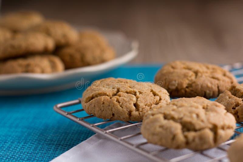 Biscuits faits maison de gingembre et d'avoine sur un support de refroidissement en métal image libre de droits