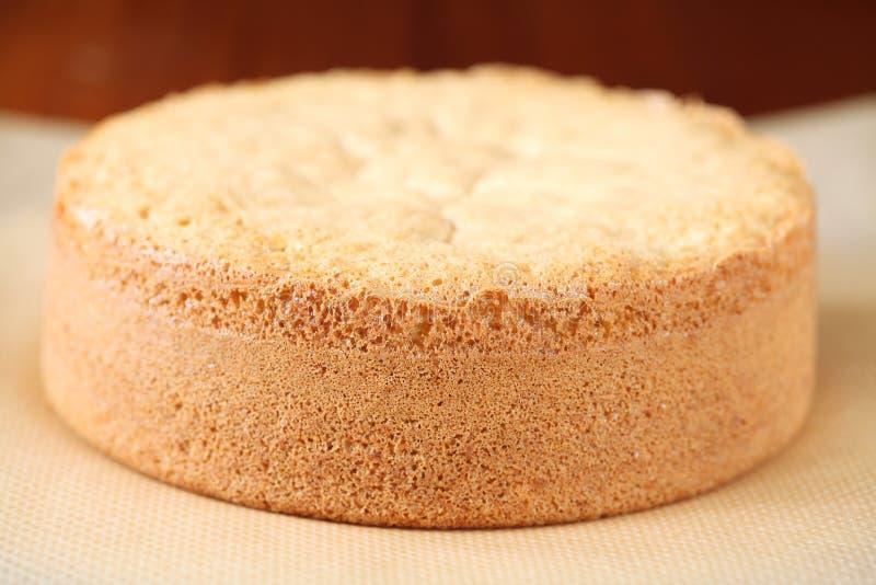 Biskwitowy gąbka tort obrazy stock