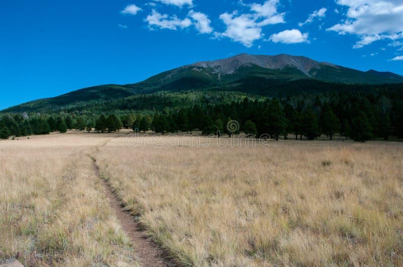 Bismarck Lake Trail stock image