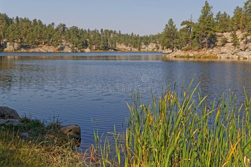 Bismark湖shireline在Custer公园 库存照片