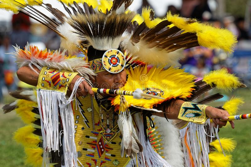 Yellow dancer of the 49th annual United Tribes Pow Wow. BISMARK, NORTH DAKOTA, September 9, 2018 : A dancer of the 49th annual United Tribes Pow Wow, one large stock photo